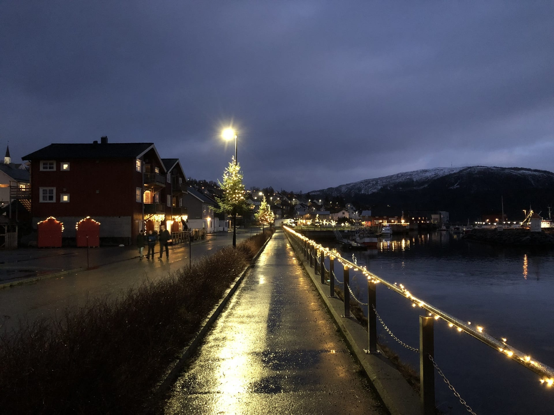 Down by the marina at Hemnesberget with the streets and trees decorated with lights at dark for Christmas.