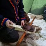 The sami, Frank in a sami-costume in a lavvo, kneeling on reindeer skin while offering reindeer meat on a tray made of bone.