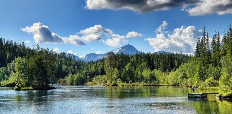 Shining clear water surrounded by green and lively nature with great mountains in the background on a blue-skied summer day.