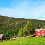 Mastervika Farm and its two red farmhouses in beautiful green nature surroundings.